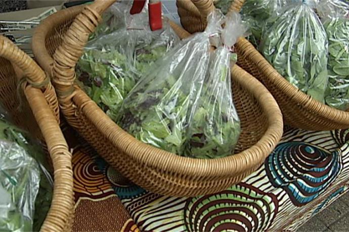 Downtown Cool Trolley & Appleton Farmers' Market_-860848127717323145