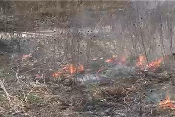 Controlled Burn in Neenah_8178442297320687512