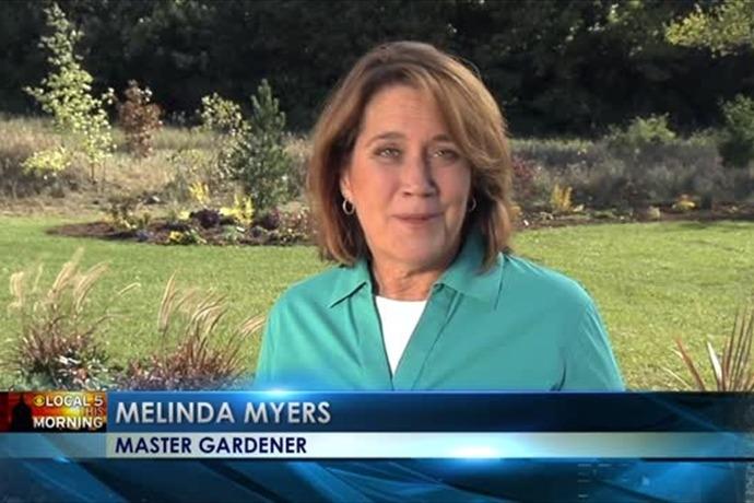 Melinda's Garden Moments_  Hiding an Eyesore_-2151920881362121213
