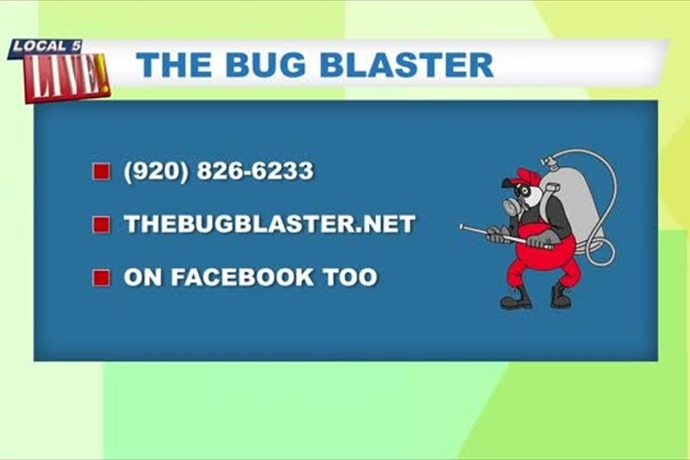 The Bug Blaster_315376451069363378
