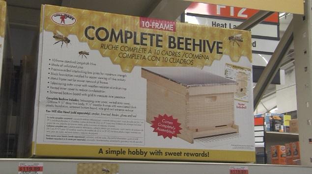BEE PIC_1453234485355.jpg