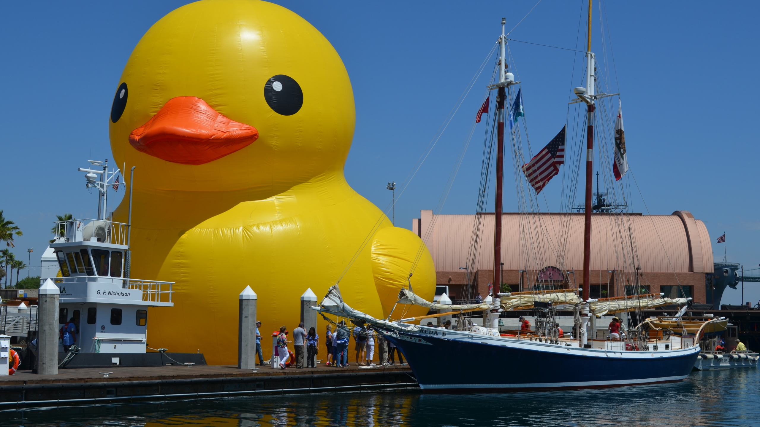 worlds largest duck