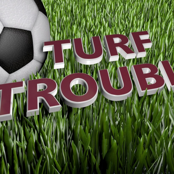 Turf Troubles_1461889585061.jpg