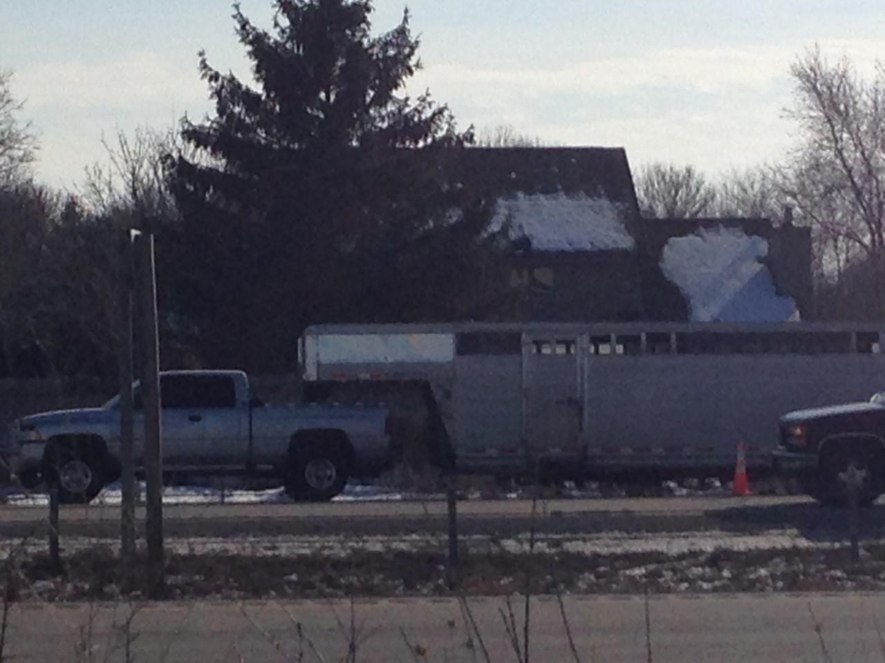cattle truck_1486758078613.jpg