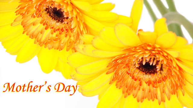 Mother's Day graphic with yellow flowers_21232542_ver1.0_640_360_1494750472029.jpg