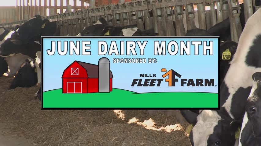 June Dairy Month Part 1
