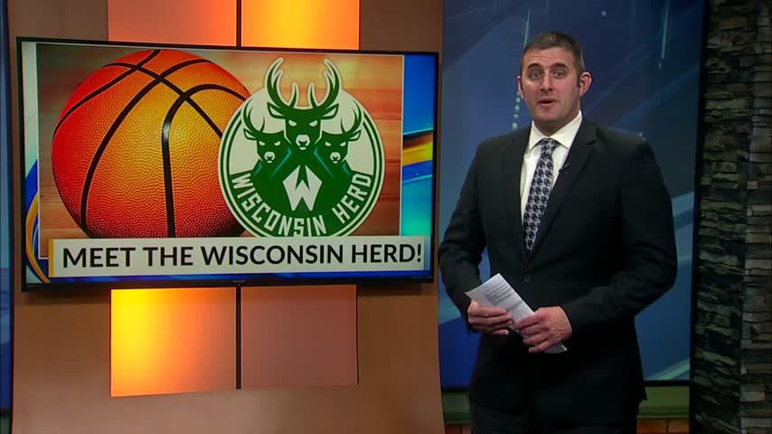 Meet the Wisconsin Herd
