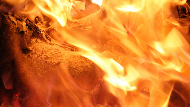 Fire53392196-159532