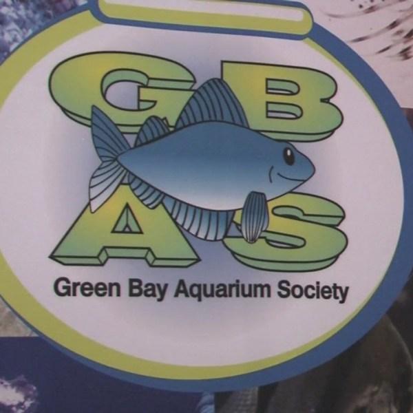 Green Bay Aquarium Society holds annual swap meeting