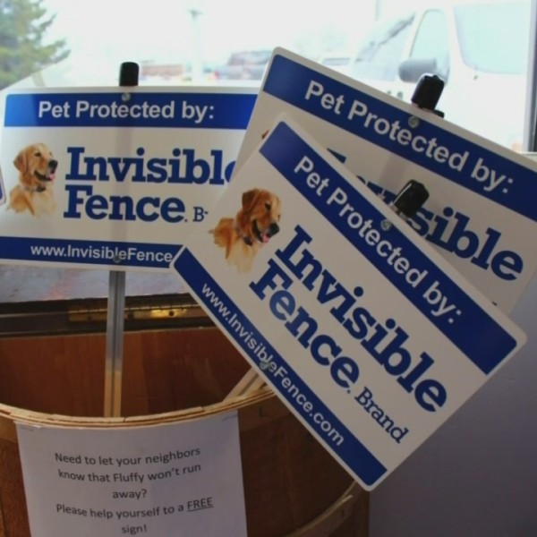 Your Local Experts: Golrusk Invisible Fence Responsible Pet Owners Month