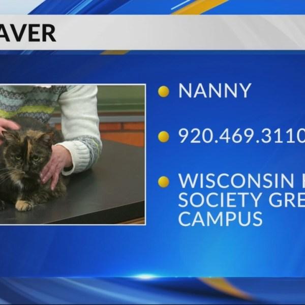 Petsaver: Nanny
