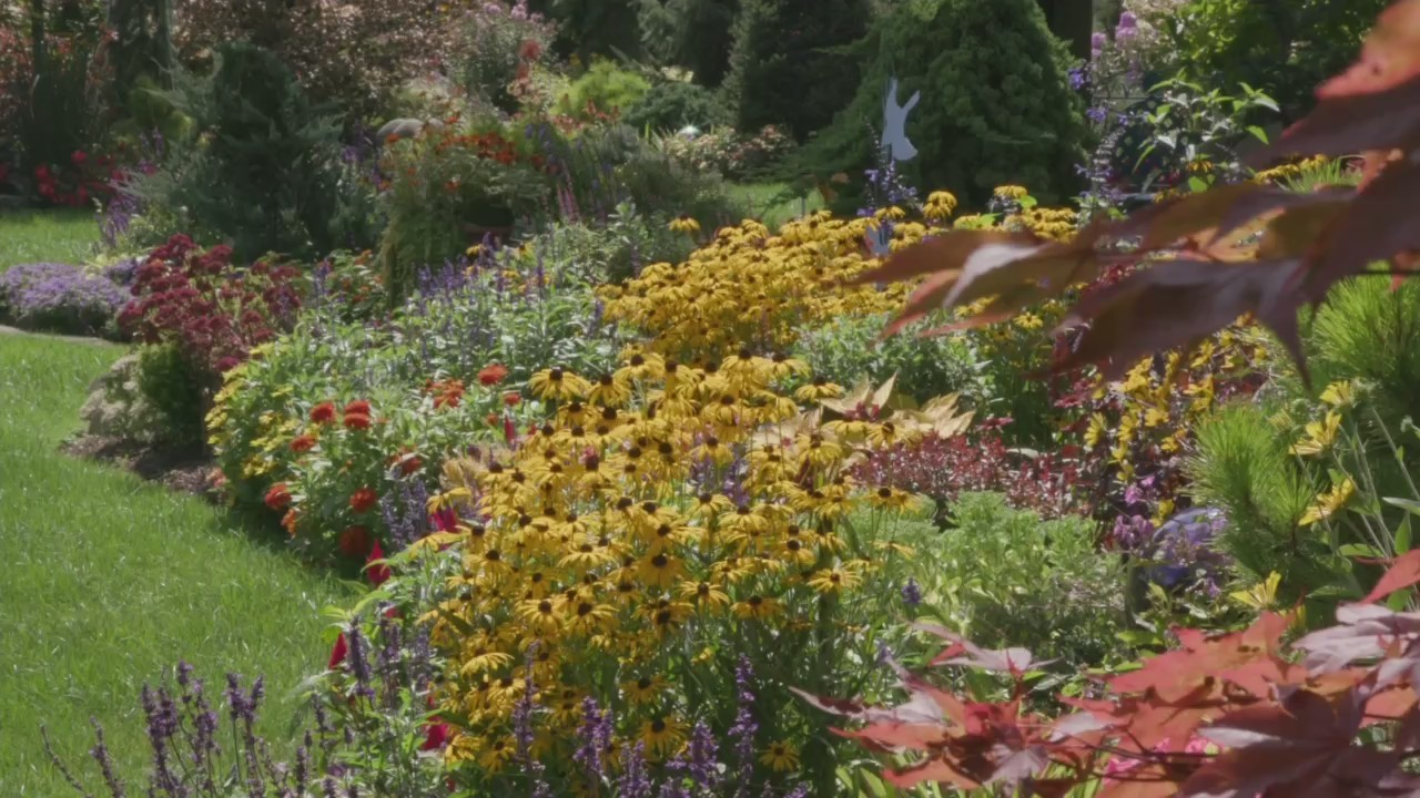 Melinda's Garden: Mixed Borders