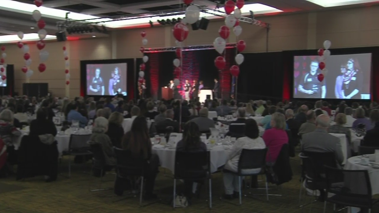 Preview of the 2018 WPS Volunteer Awards