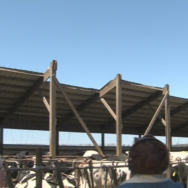 Walker tours farms