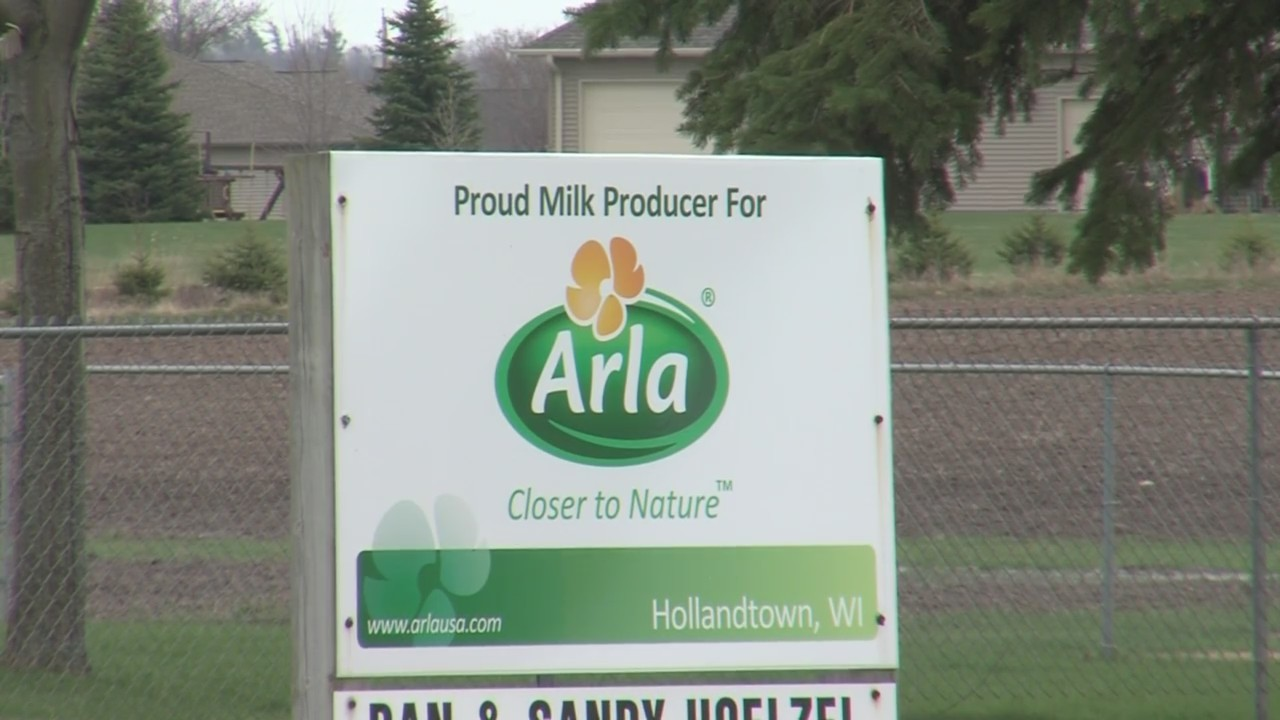 Hollandtown cheese plant to stop buying milk from 11 area farmers