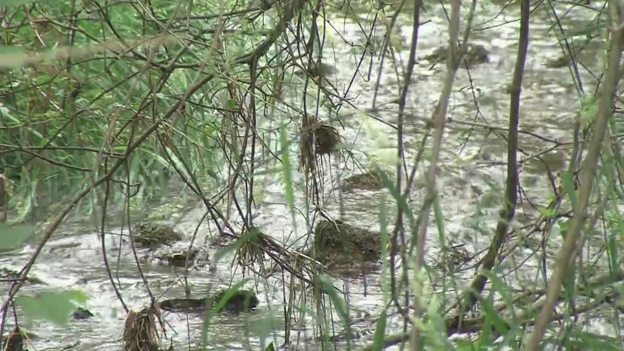 Kewaunee_County_Environment_Survey_0_20180619232206