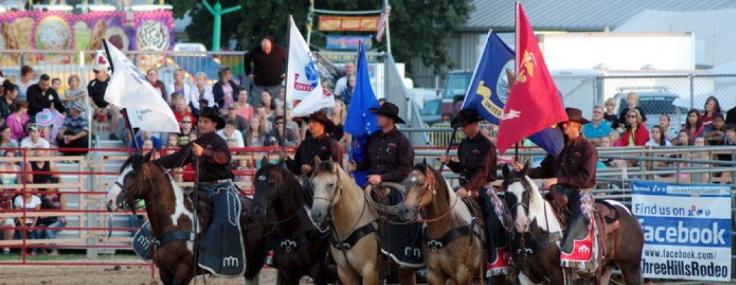 brown county fair.jpg