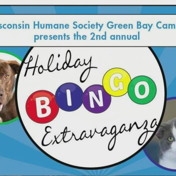 Holiday Bingo Extravaganza