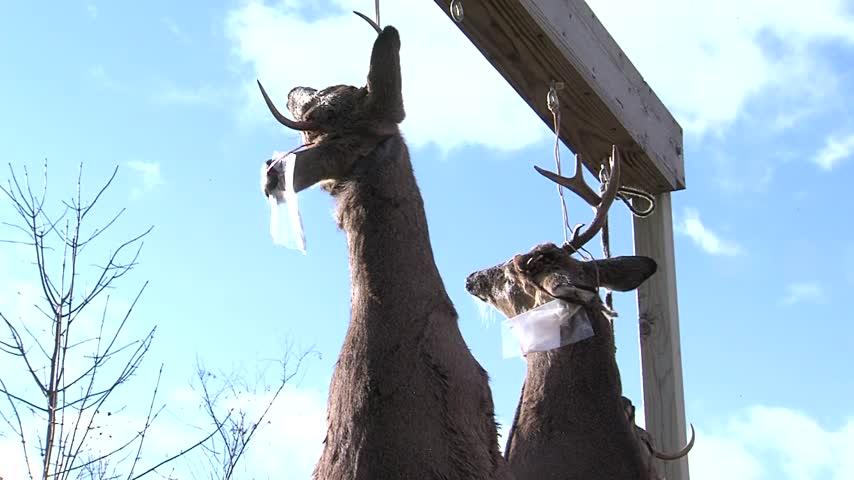Deer hunters head into the woods in Wisconsin_54329720