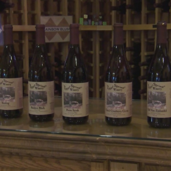 Holiday Hot Spot: Trout Springs Winery