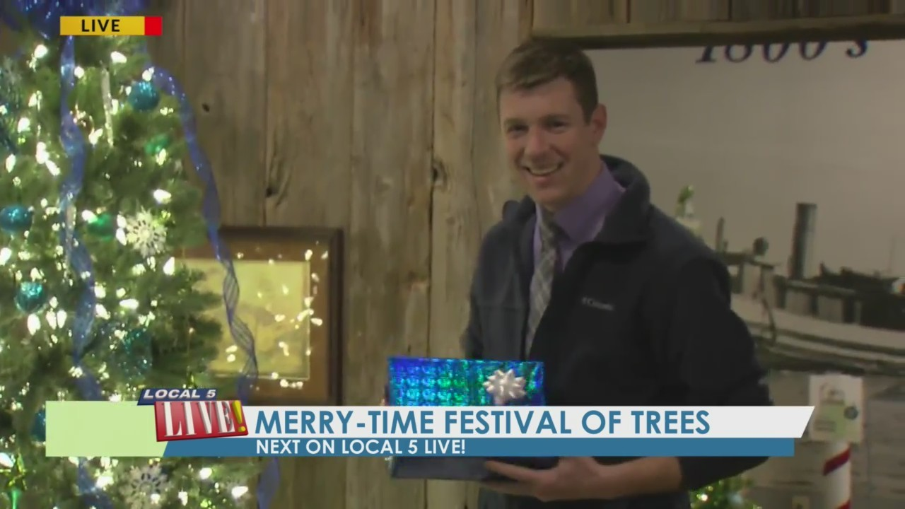 Merry-Time Festival of Trees