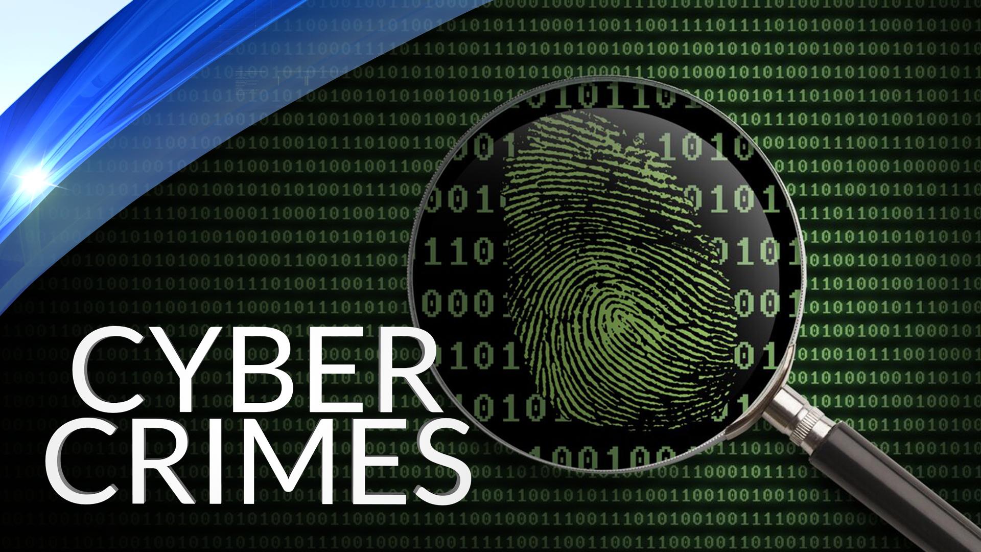 Cyber Crimes_1544732719500.png.jpg