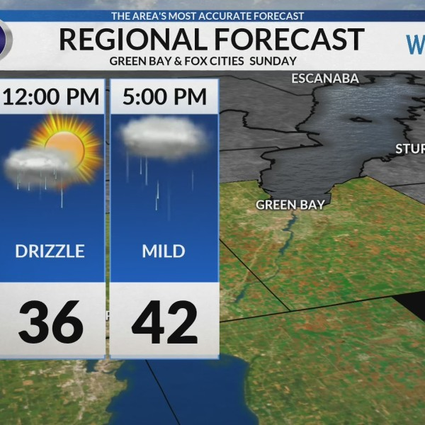 Regional Forecast: Green Bay/Valley 2/3/2019
