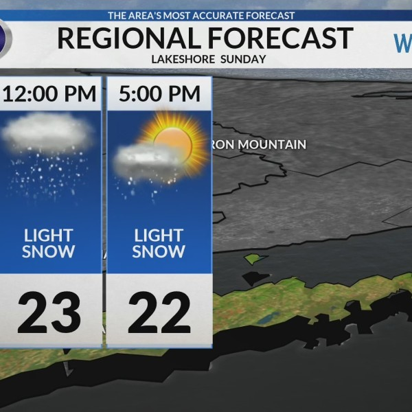 Regional Forecast: Lakeshore 2/10/2019