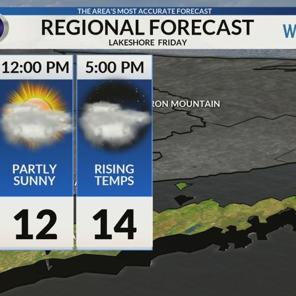 Regional Forecast: Lakeshore 2/1