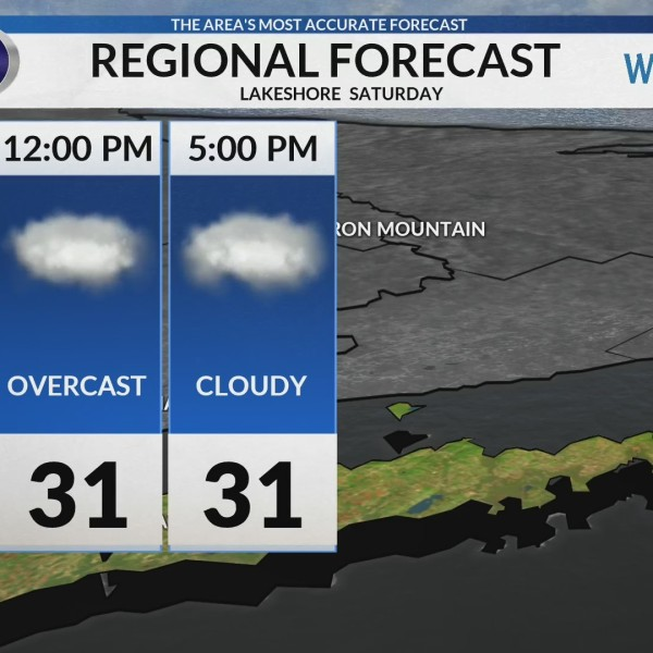 Regional Forecast: Lakeshore 2/2/2019
