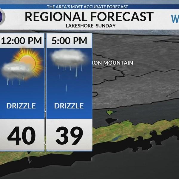 Regional Forecast: Lakeshore 2/3/2019