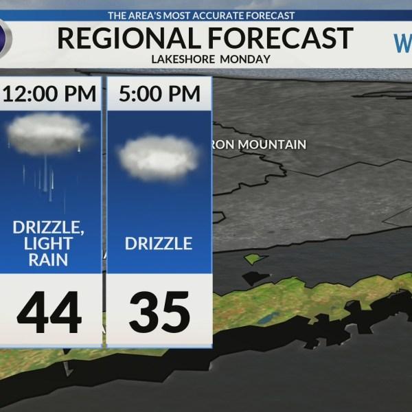 Regional Forecast: Lakeshore 2/4