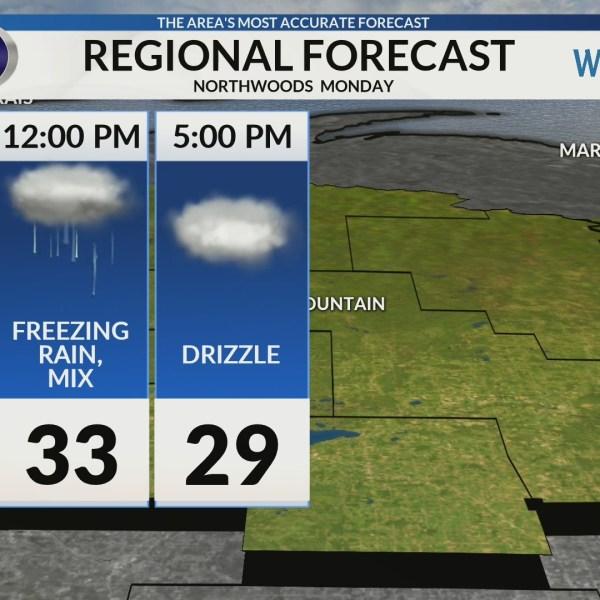 Regional Forecast: Northwoods 2/4