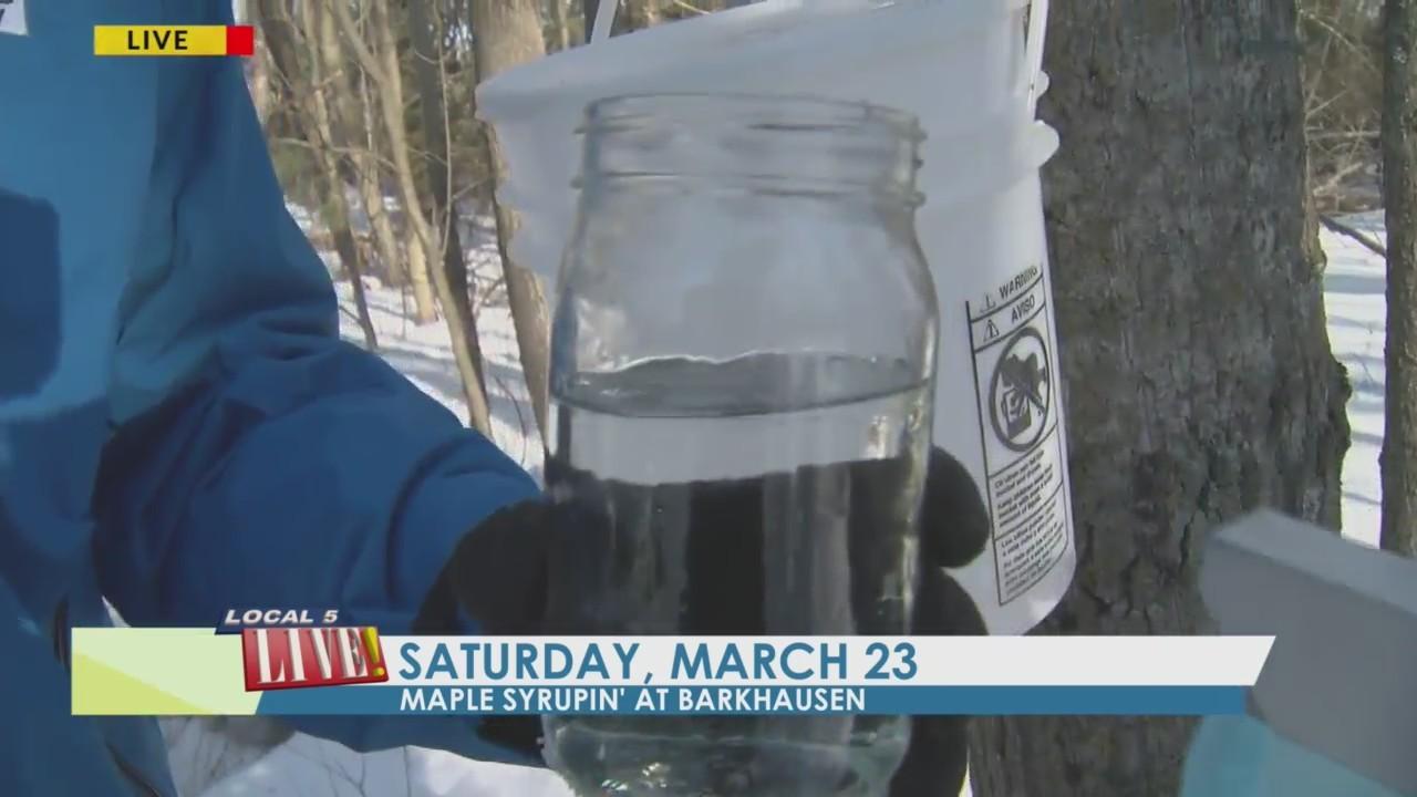 Maple Syrupin' at Barkhausen