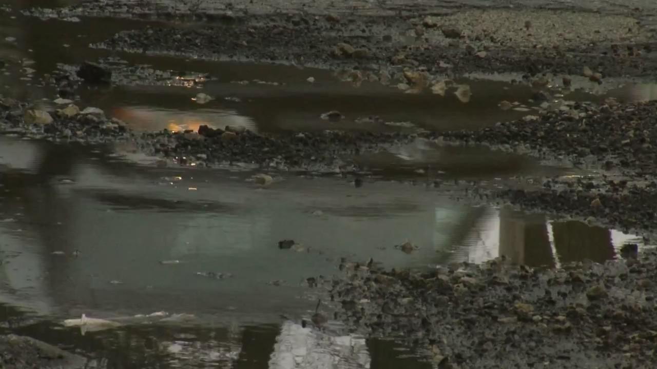 Pothole Palooza