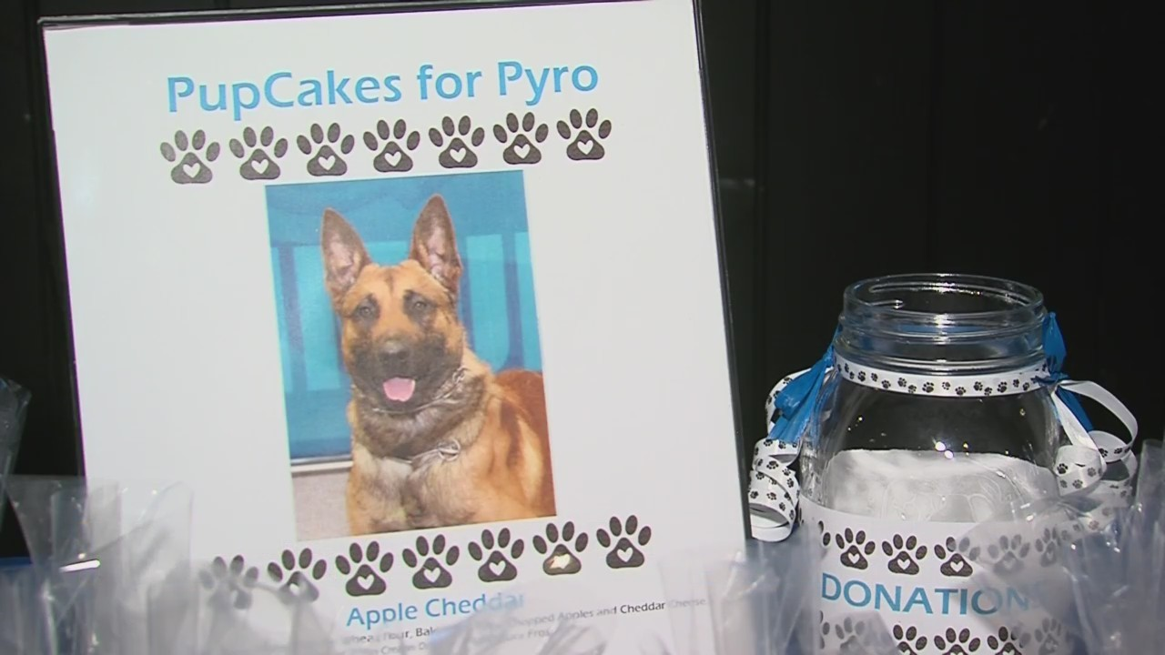 FUNDRAISER_FOR_POLICE_K9_PYRO_0_20190412031222