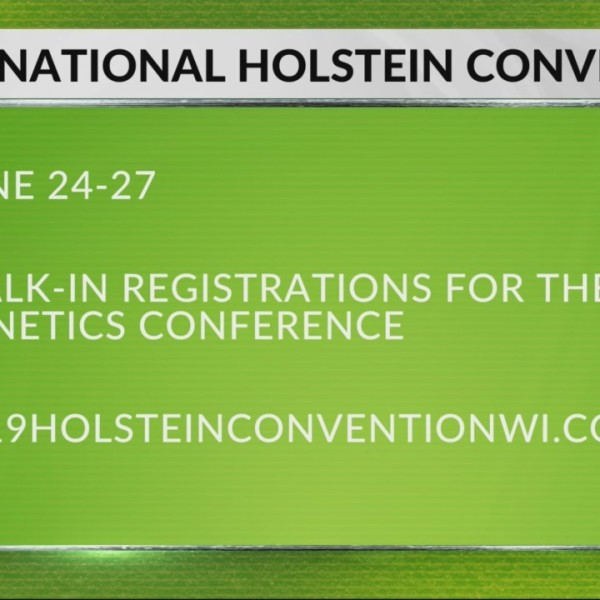 Something for the whole family at the National Holstein Convention