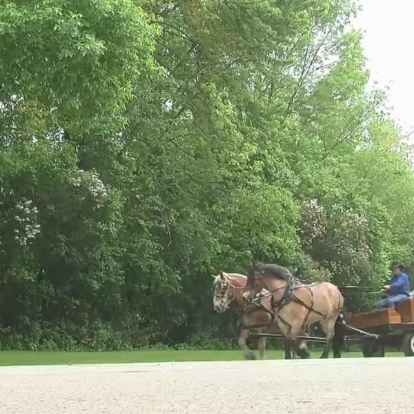 Historic Wagon Ride