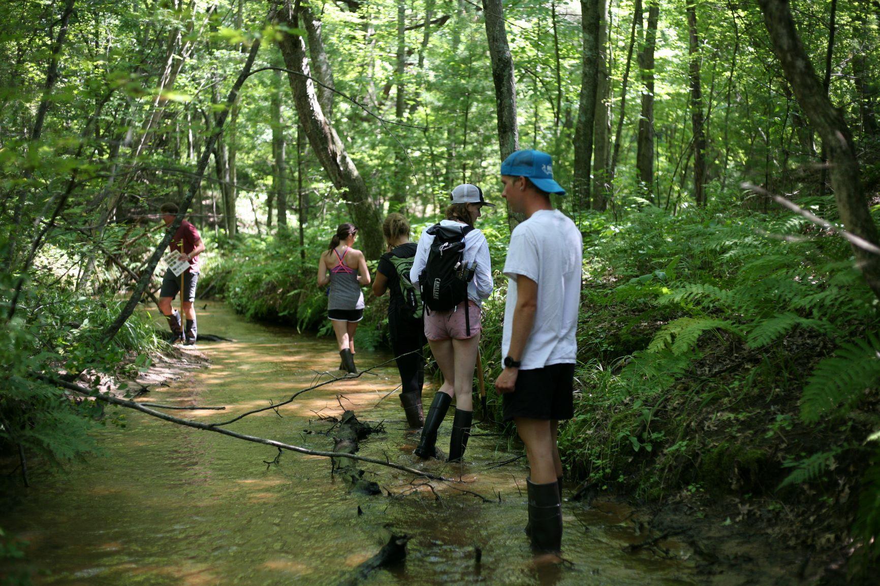 Over 150 new populations of aquatic invasive species found in Wisconsin